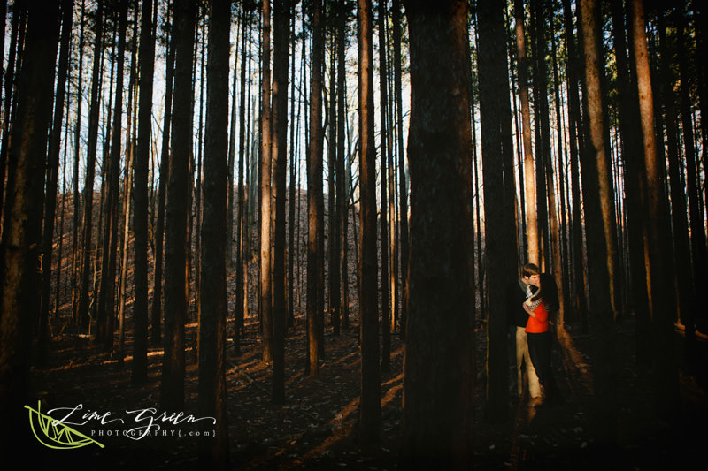 engagement pine trees woods charlotte nc