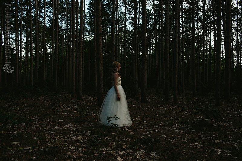 asheville wedding in the woods