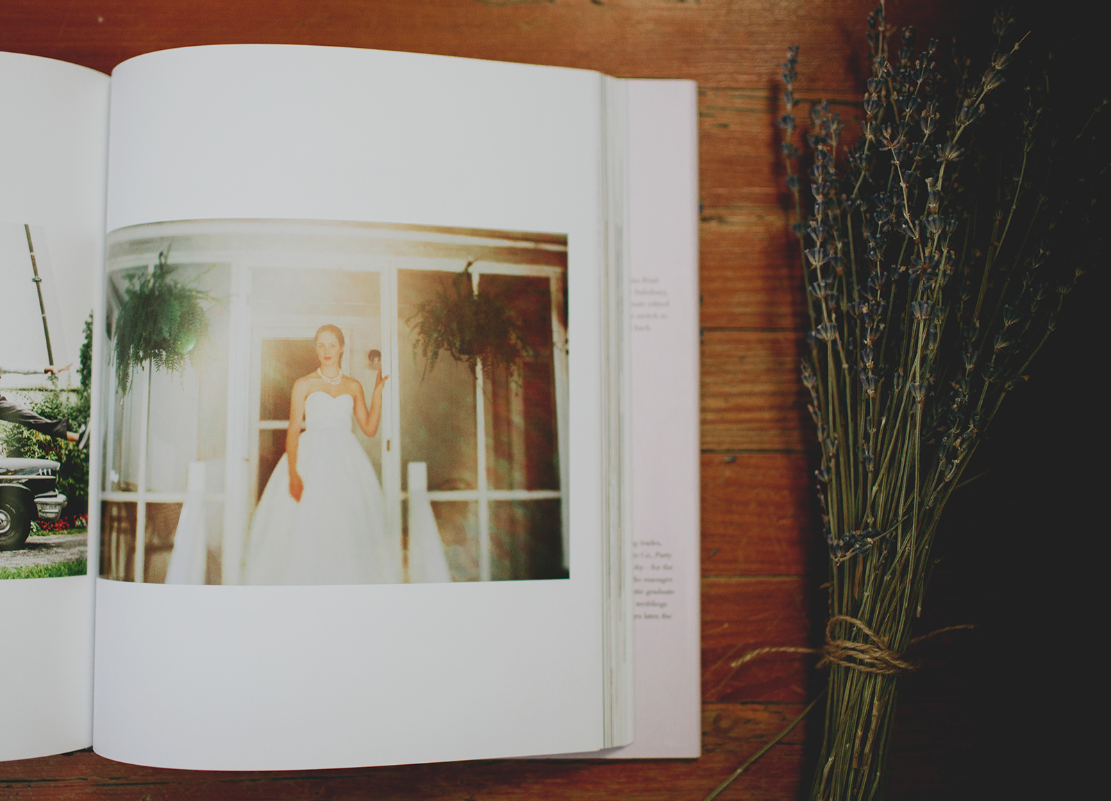 morningwild carolina bride book