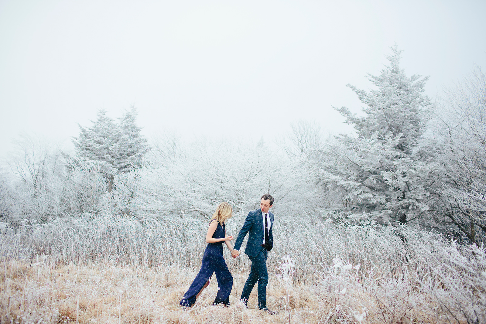 roan mountain weddings