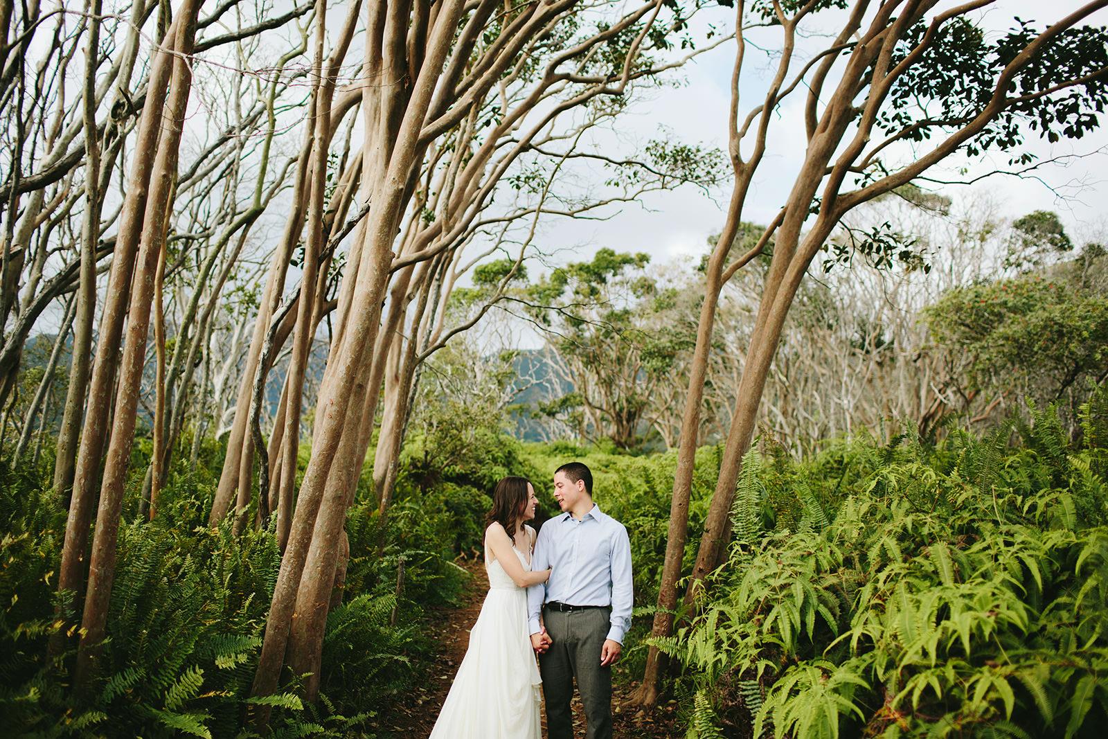 waihee trail elopements