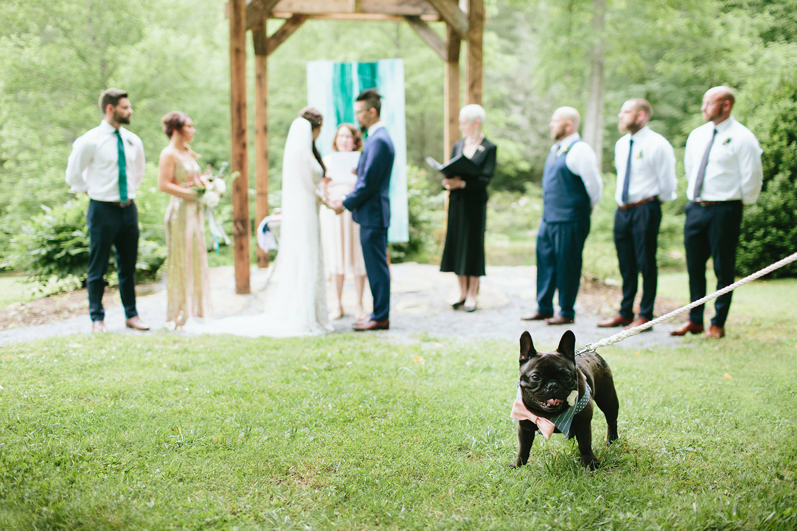 incorporating dogs into your wedding