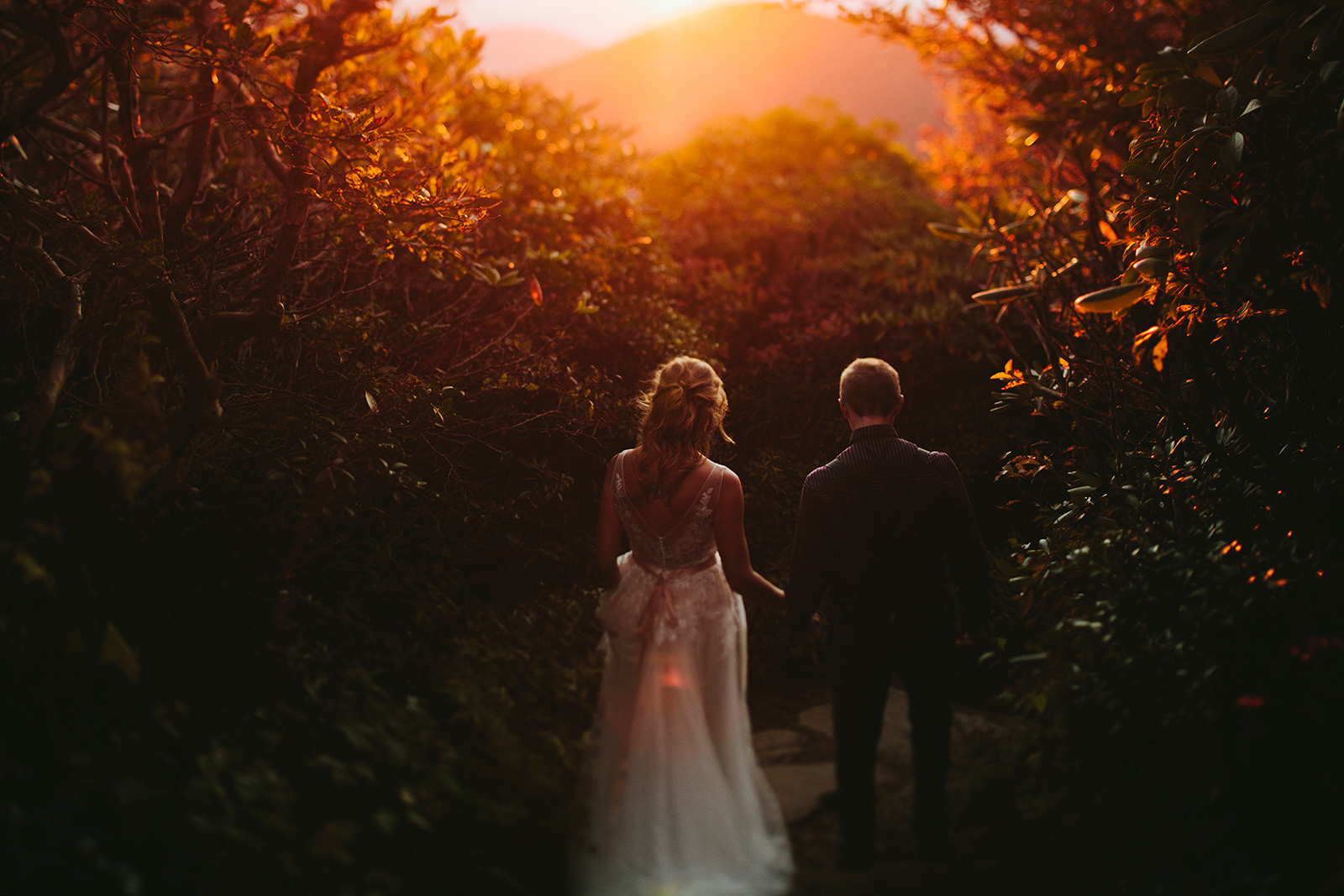 craggy gardens elopement photographers