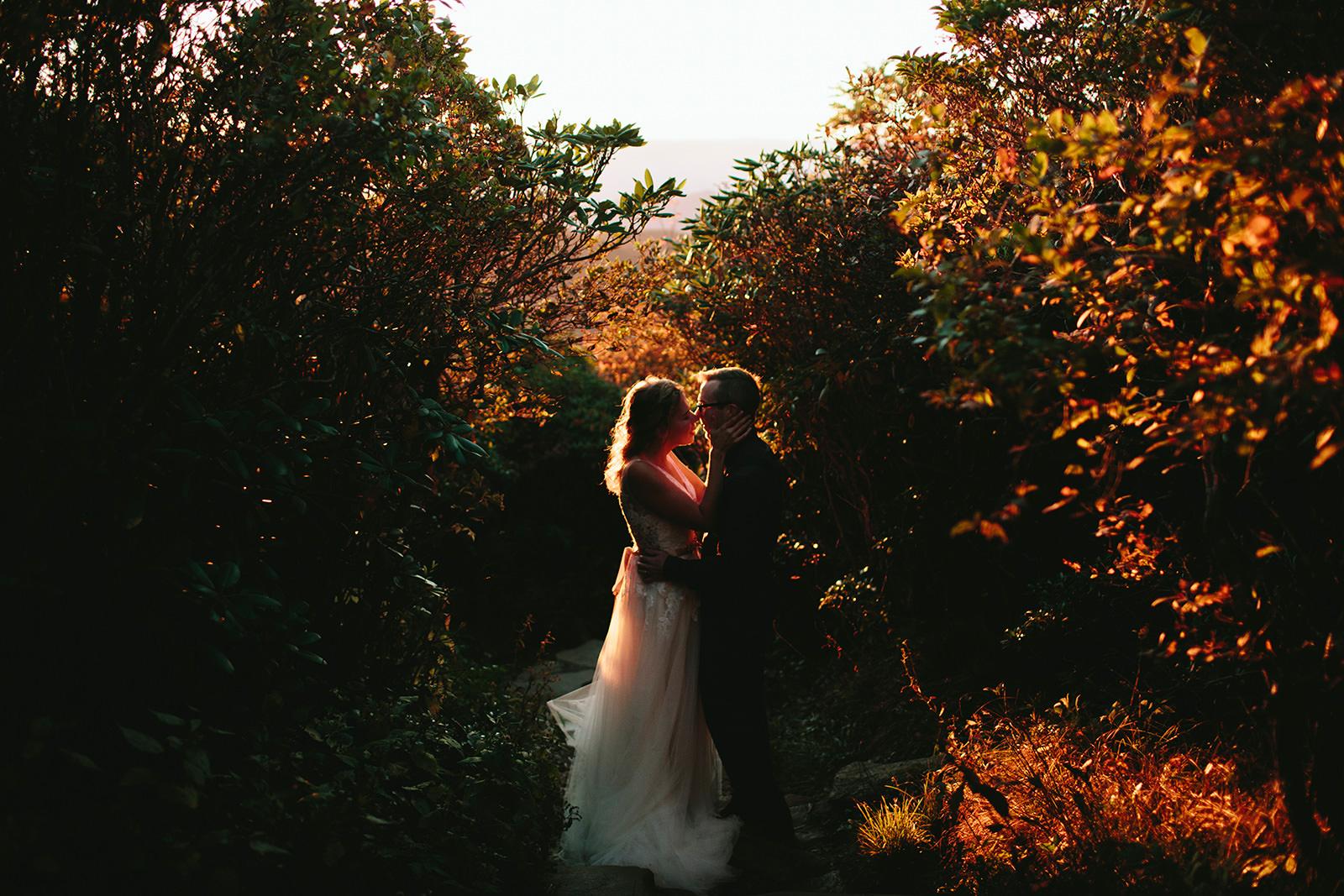 craggy gardens photos