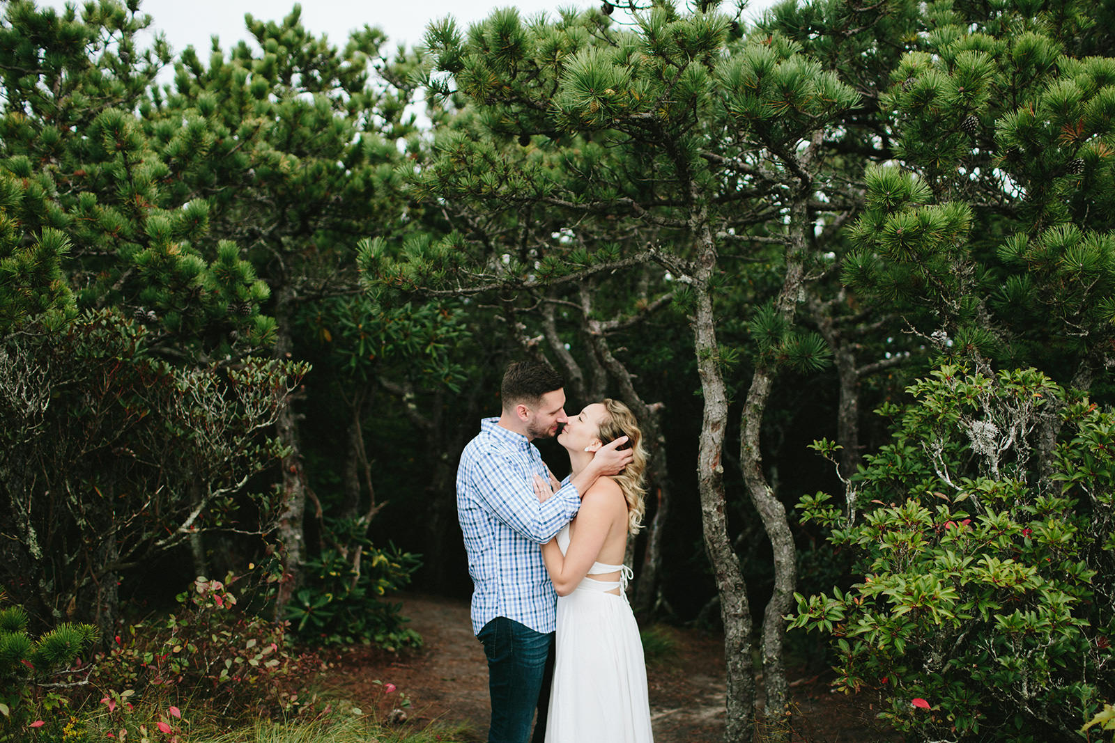 wooded elopement boone