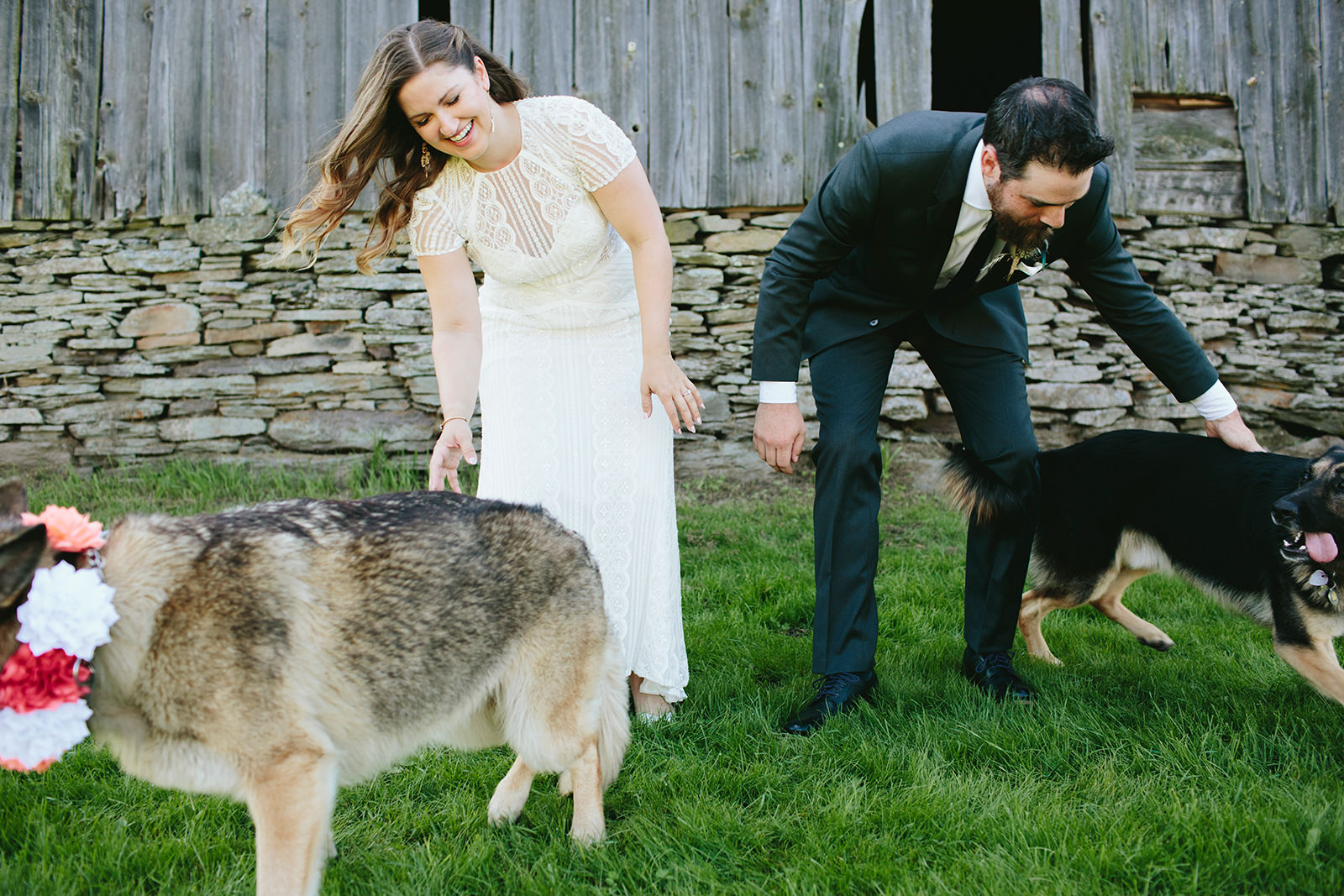 dogs in your wedding