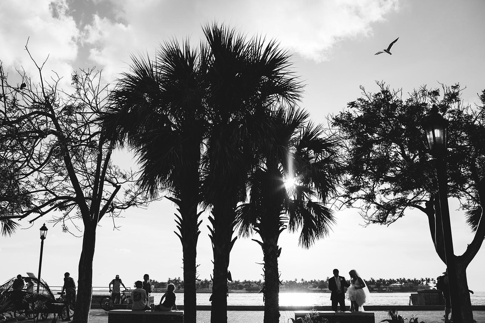 florida wedding photos