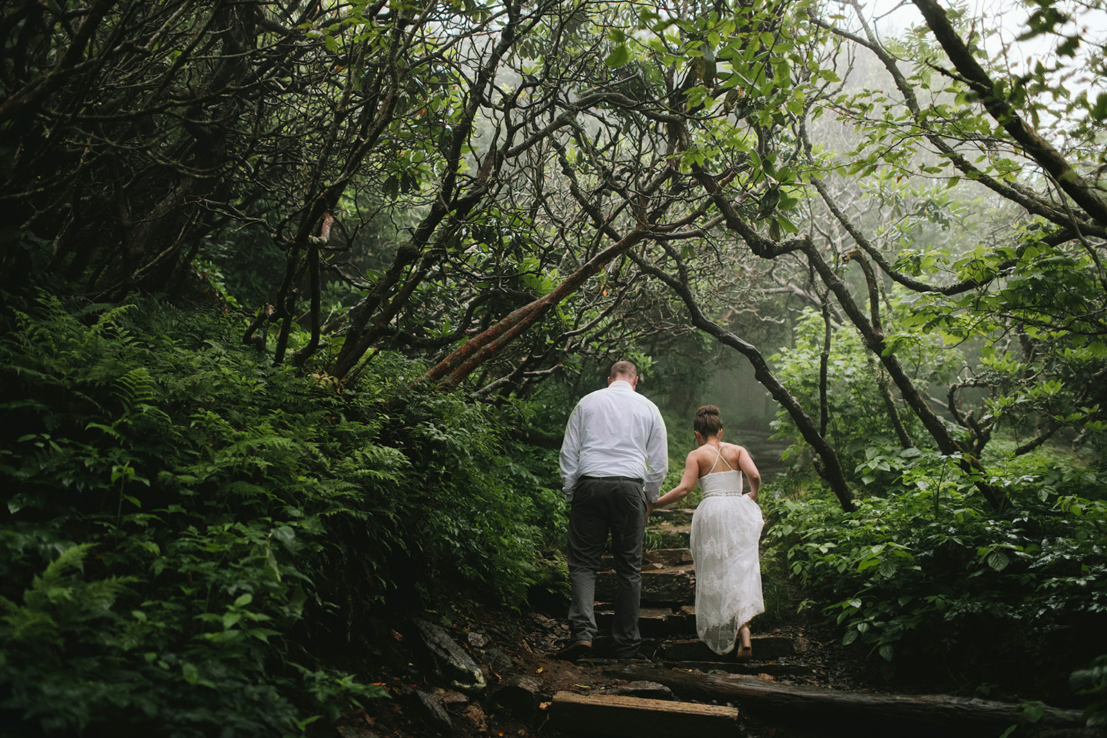 craggy gardens wedding photos