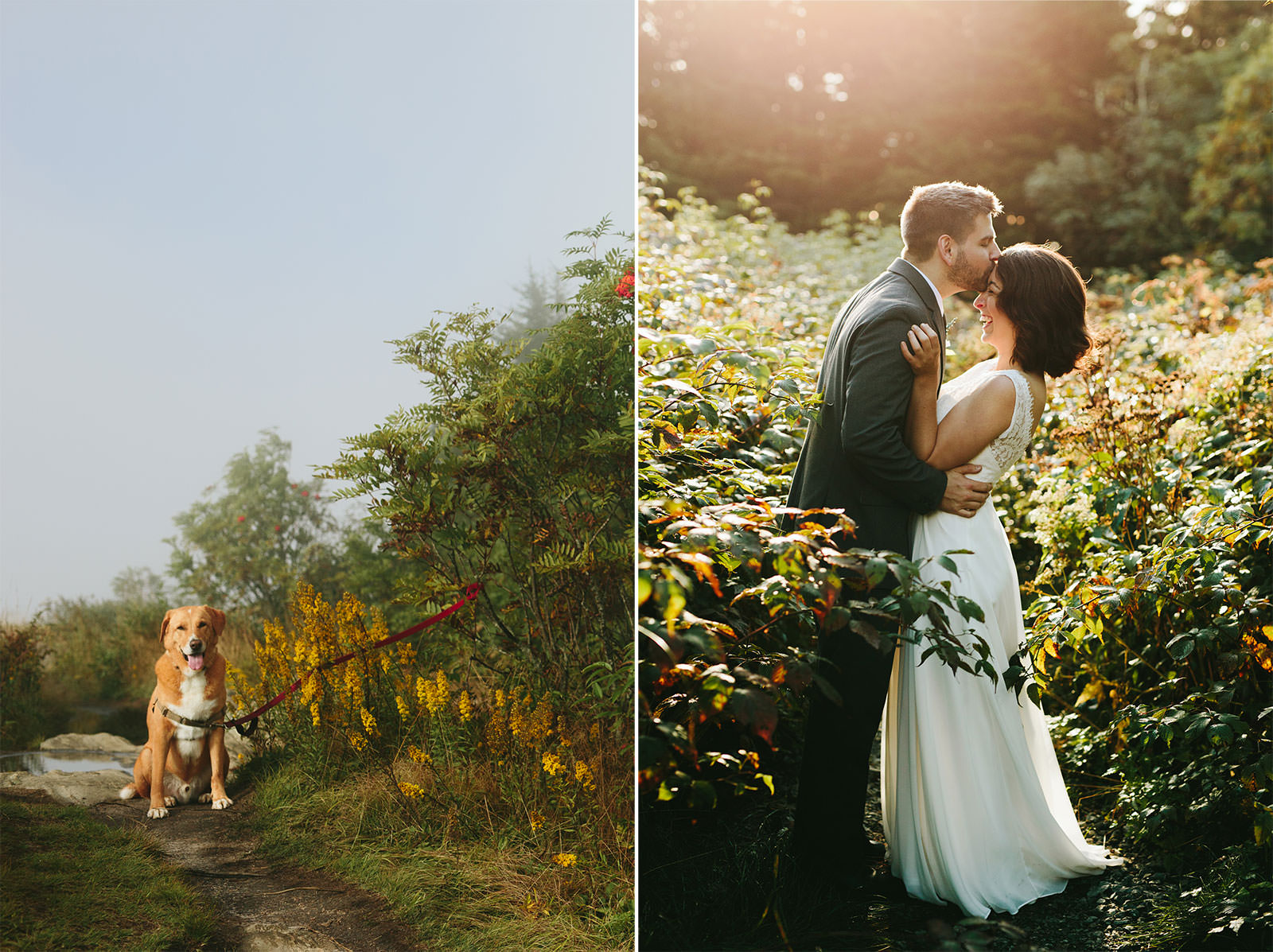 elopement-photos-black-balsam-knob