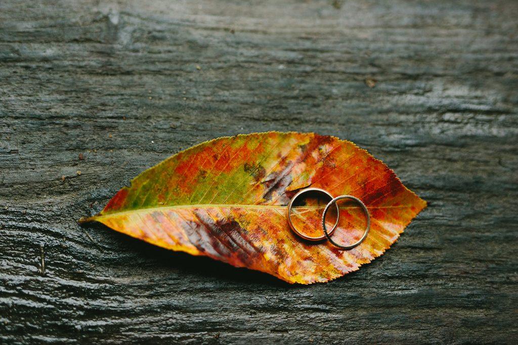 fall-ring-photos