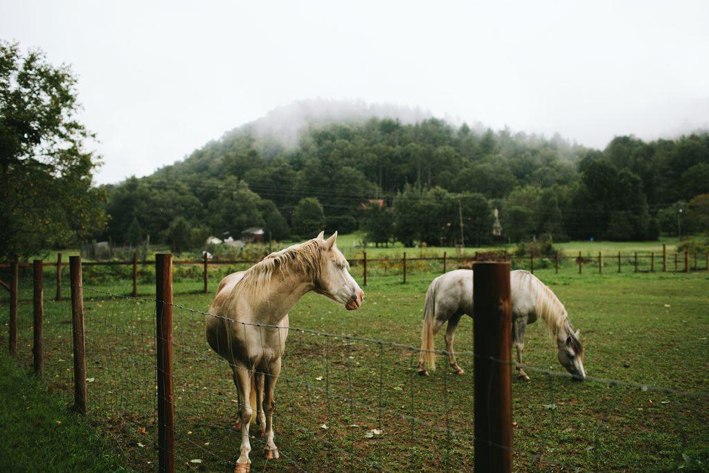 farm-wedding-venues-boone
