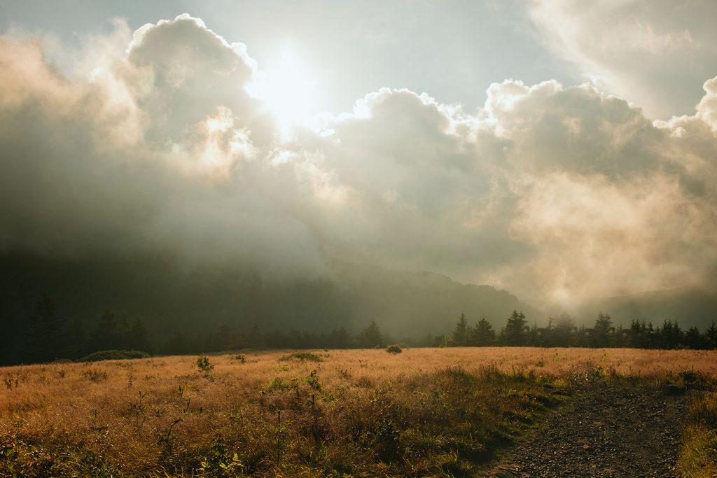 carvers gap roan mountain