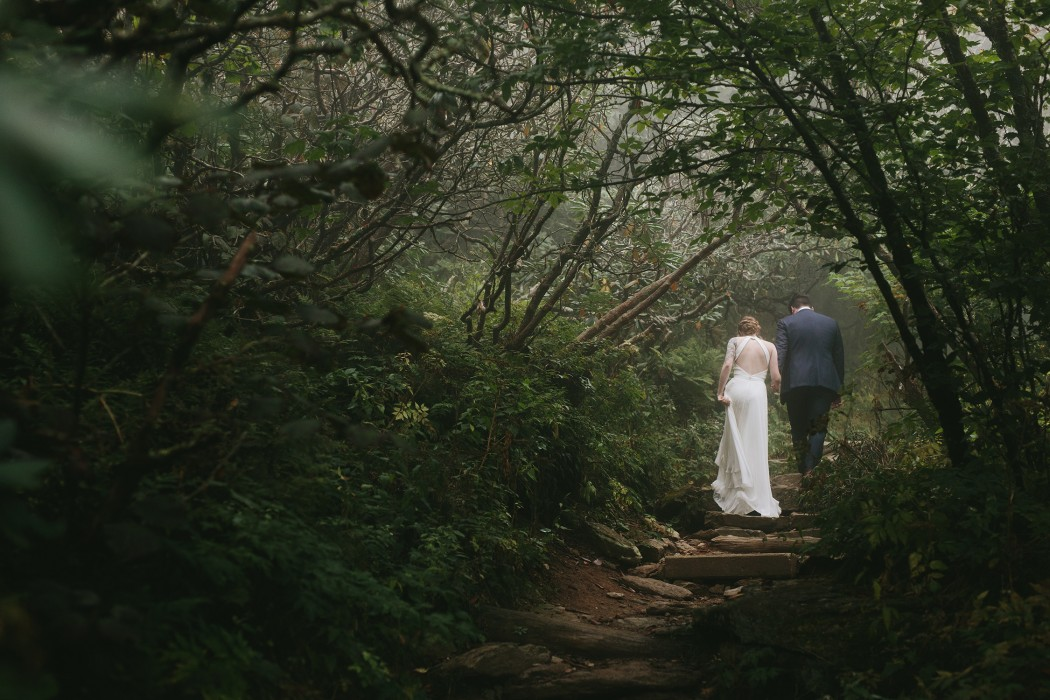 craggy gardens wedding