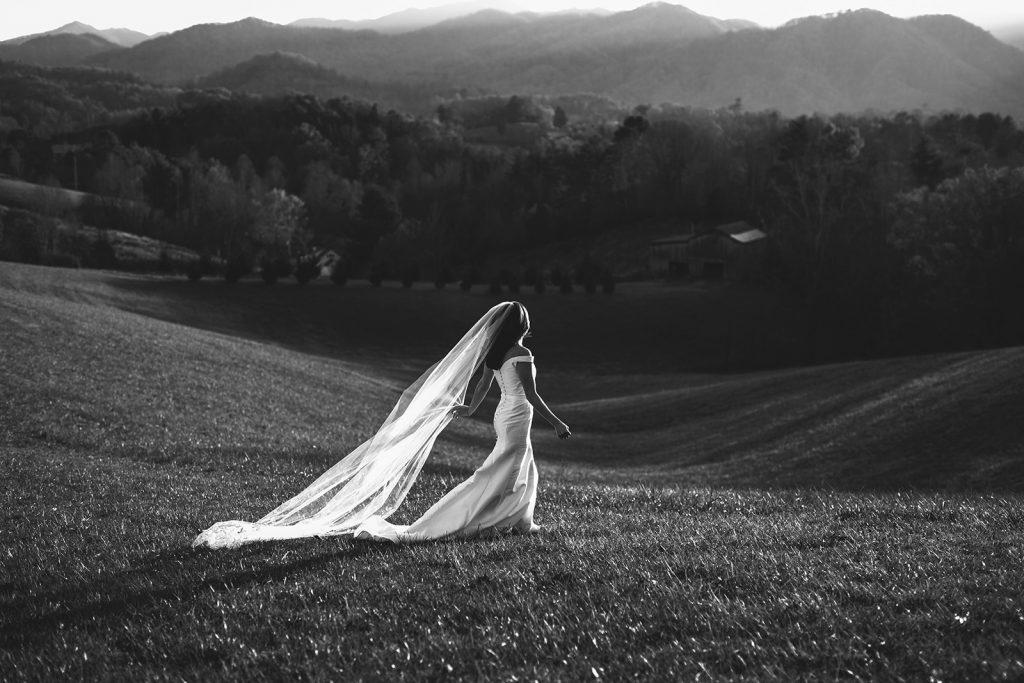 the ridge asheville wedding photos