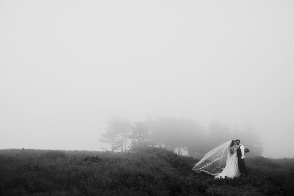 roan mountain wedding